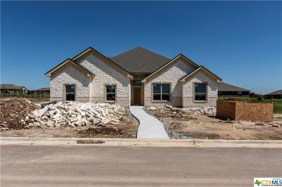 Salado Single Family Home For Sale: 3298 Wild Seed Drive