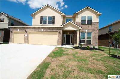 New Braunfels Single Family Home For Sale: 1717 Fall View