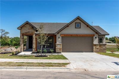Williamson County Single Family Home For Sale: 405 Morning Ridge Court