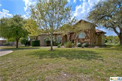 New Braunfels Single Family Home For Sale: 1239 Vintage