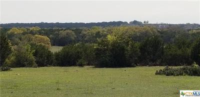 Lampasas Residential Lots & Land For Sale: Tbd County Road 4034 E/S