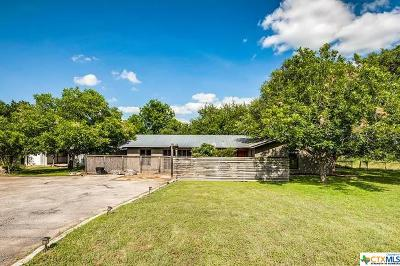 Comal County Single Family Home For Sale: 1350 Ervendberg