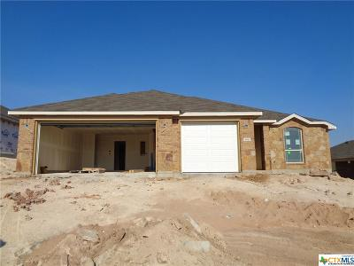 Killeen Single Family Home For Sale: 3910 Flat Rock Mountain Drive