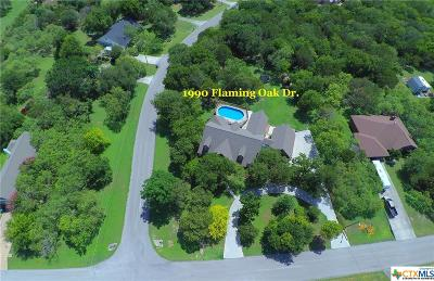 New Braunfels Single Family Home For Sale: 1990 Flaming Oak Drive