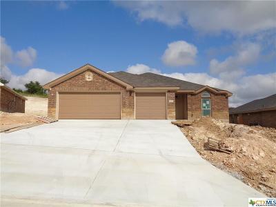 Killeen Single Family Home For Sale: 3908 Flatrock Mountain Flatrock Mountain Drive
