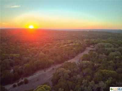 Bell County, Burnet County, Coryell County, Lampasas County, Llano County, McLennan County, Mills County, San Saba County, Williamson County Residential Lots & Land For Sale: 722 County Rd 220