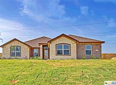 Salado Single Family Home For Sale: 4307 Green Creek Drive