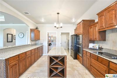 Belton Single Family Home For Sale: 3028 Mystic Mountain Lane