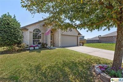 McLennan County Single Family Home For Sale: 6404 Tierra Drive