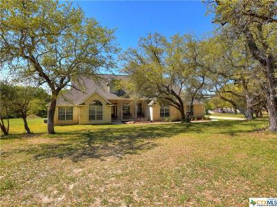 Williamson County Single Family Home For Sale: 131 N Showhorse Drive
