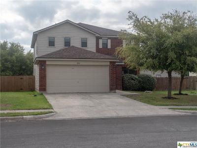 San Marcos Single Family Home For Sale: 224 Calixto