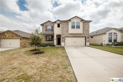 Temple, Belton Single Family Home For Sale: 5219 Dauphin Drive