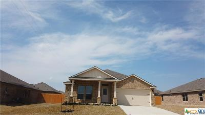 Killeen Single Family Home For Sale: 113 Danielle Drive