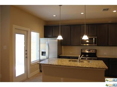 New Braunfels Condo/Townhouse For Sale: 724 Gristmill Drive #19A