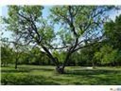 Lampasas Residential Lots & Land For Sale: 215 Private Road 2831