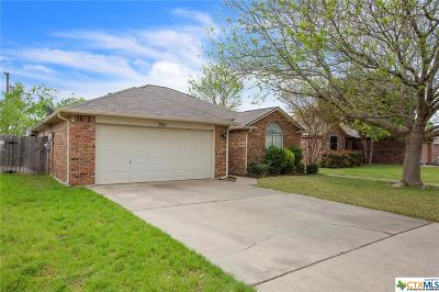 Single Family Home For Sale: 301 Meadowbrook
