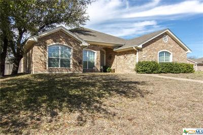 Harker Heights Single Family Home For Sale: 400 Chieftain Trail