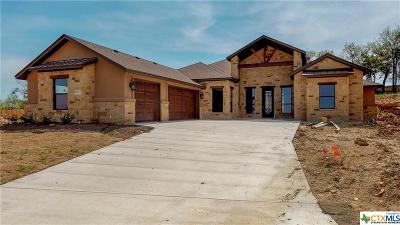 Salado Single Family Home For Sale: 1003 Vista View