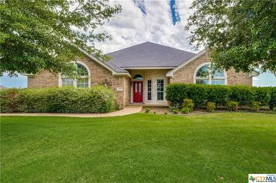 Salado Single Family Home For Sale: 282 Hamer