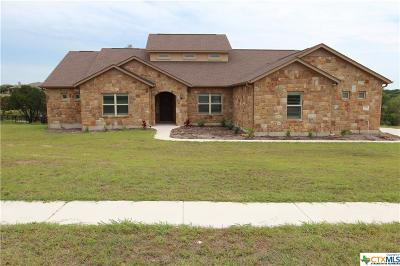 Liberty Hill Single Family Home For Sale: 700 Buffalo Trail