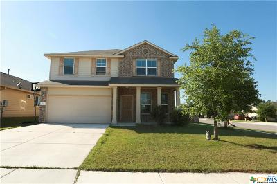 San Marcos Single Family Home For Sale: 317 Wisteria Way
