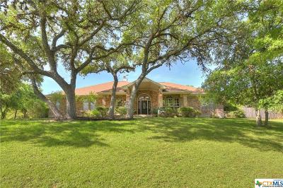 San Marcos Single Family Home For Sale: 725 Willow Ridge Drive