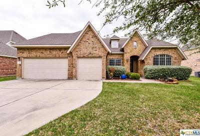 Williamson County Single Family Home For Sale: 302 Las Colinas Drive