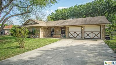 Single Family Home For Sale: 839 Sunshadow Drive