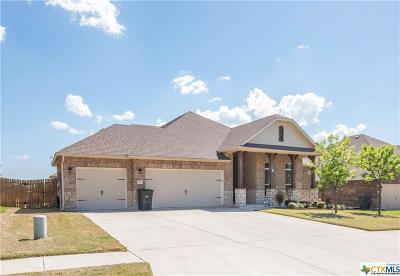 Killeen Single Family Home For Sale: 6106 Tanzanite Drive