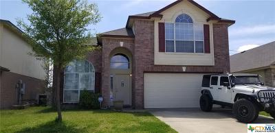 Killeen  Single Family Home For Sale: 4810 Donegal Bay Court
