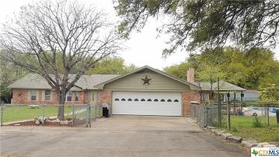 Temple, Belton, Salado, Troy Single Family Home For Sale: 6740 Paddy Hamilton Road