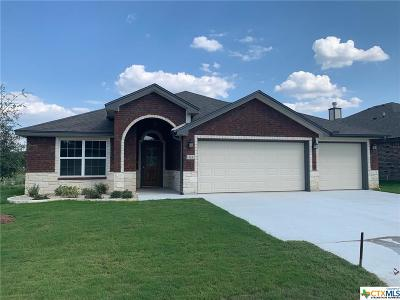 Belton TX Single Family Home For Sale: $262,125