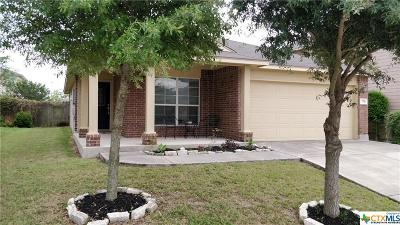 New Braunfels Single Family Home For Sale: 770 Andora Drive