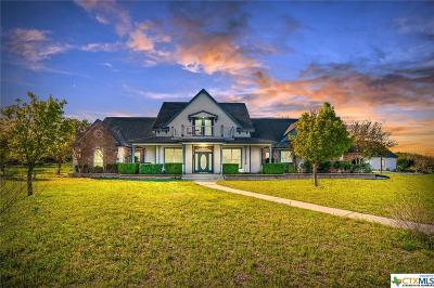 Williamson County Single Family Home For Sale: 301 Quarterhorse Drive