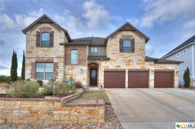 San Marcos Single Family Home For Sale: 203 Ancient Oak Way