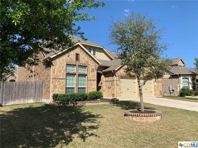 Round Rock Single Family Home For Sale: 2860 Nolina Lane