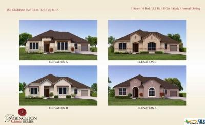 Schertz Single Family Home For Sale: 10581 Gage Parkway