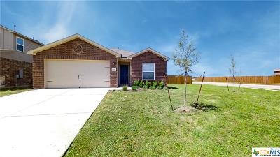 Kyle TX Single Family Home For Sale: $229,999