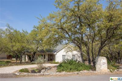 Wimberley TX Single Family Home For Sale: $389,000