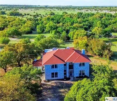 Lampasas Single Family Home For Sale: 4033 E Fm 580