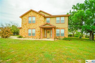 Kempner Single Family Home For Sale: 3964 Wells Drive