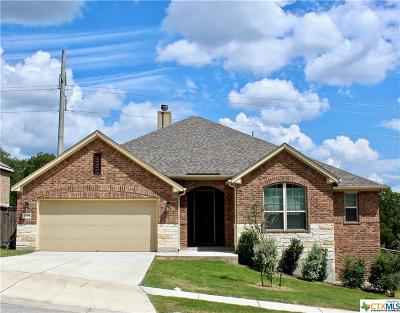 New Braunfels Single Family Home For Sale: 1270 Hidden Cave Drive