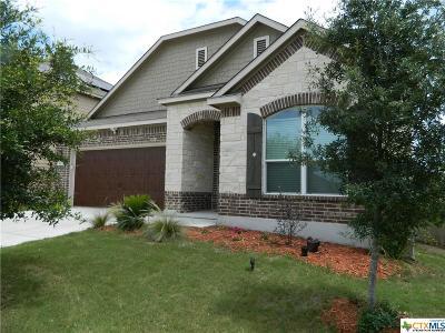 Cibolo Single Family Home For Sale: 104 Landmark Haven
