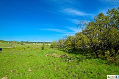 Coryell County Residential Lots & Land For Sale: Us Hwy 281 Lot 9