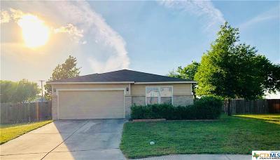 New Braunfels Single Family Home For Sale: 1410 Cap Stone Ridge