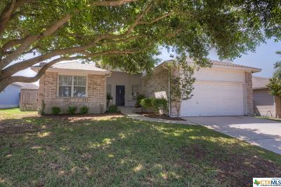 New Braunfels Single Family Home For Sale: 1613 Sunstone Circle