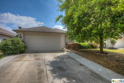 New Braunfels Single Family Home For Sale: 227 Hondo Drive