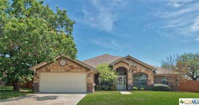 Killeen Single Family Home For Sale: 6108 Flag Stone Drive
