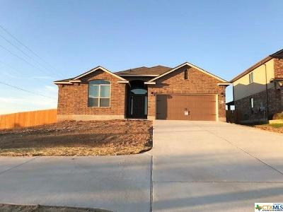 Copperas Cove Single Family Home For Sale: 1401 Lubbock Drive