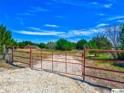 Lampasas County Residential Lots & Land For Sale: 00 County Road 2699 Tract 1
